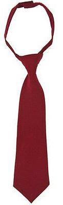 Boys Assorted Solid Color Ties By French Toast School Unifor